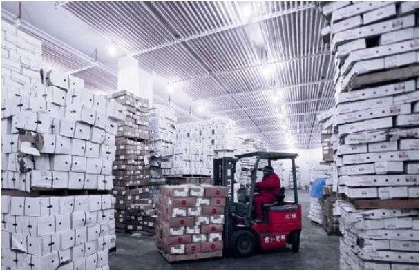 上海至贵阳恒温物流公司冷冻运输相关信息