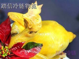 上海到天津冷冻物流专线冷冻货运餐饮物流