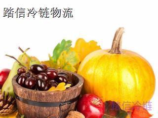 上海到三门峡冷藏物流专线免费上门提货