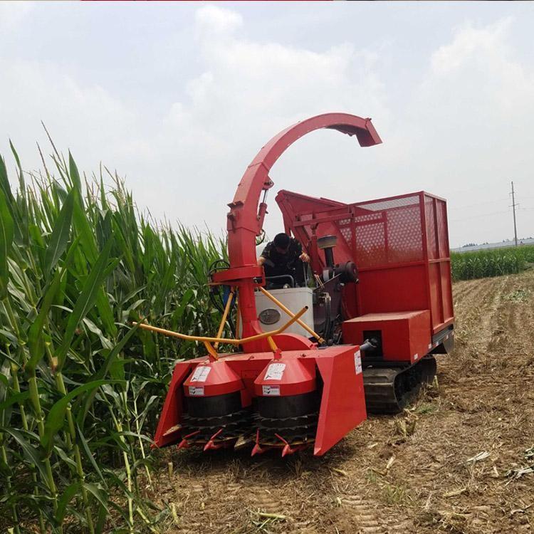 回收秸秆国丰玉米收割机详细解读