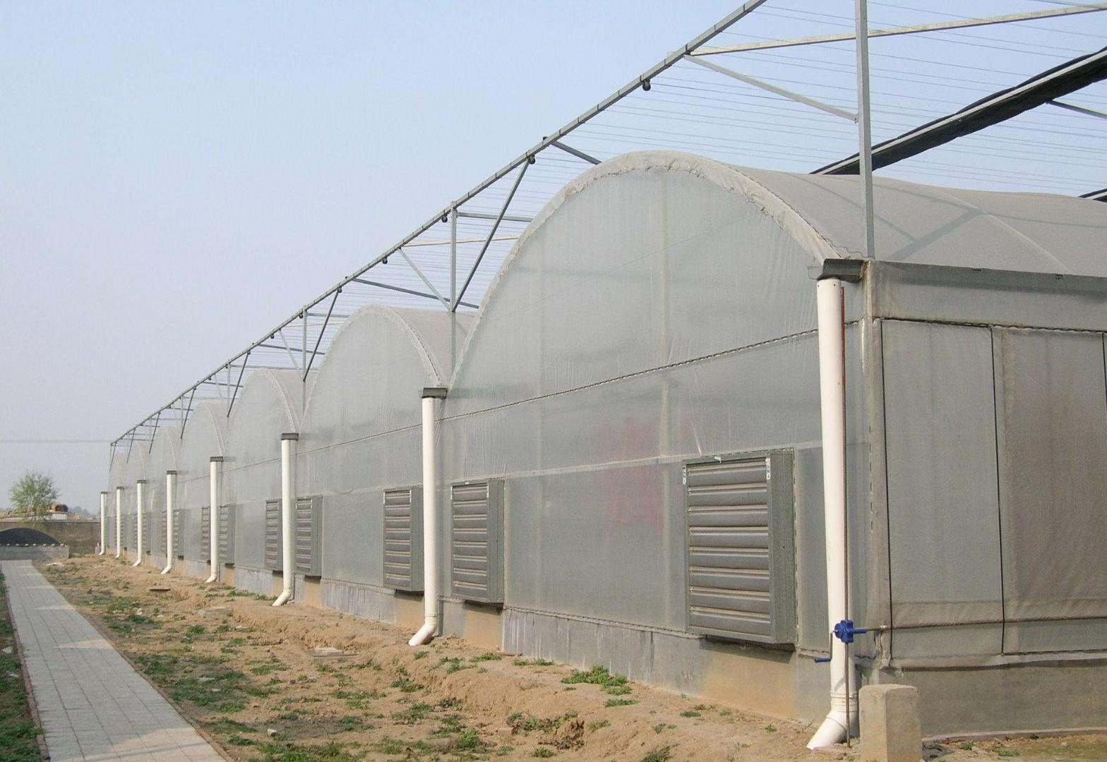 玉溪农业种植暖棚-大棚常见结构参数2021