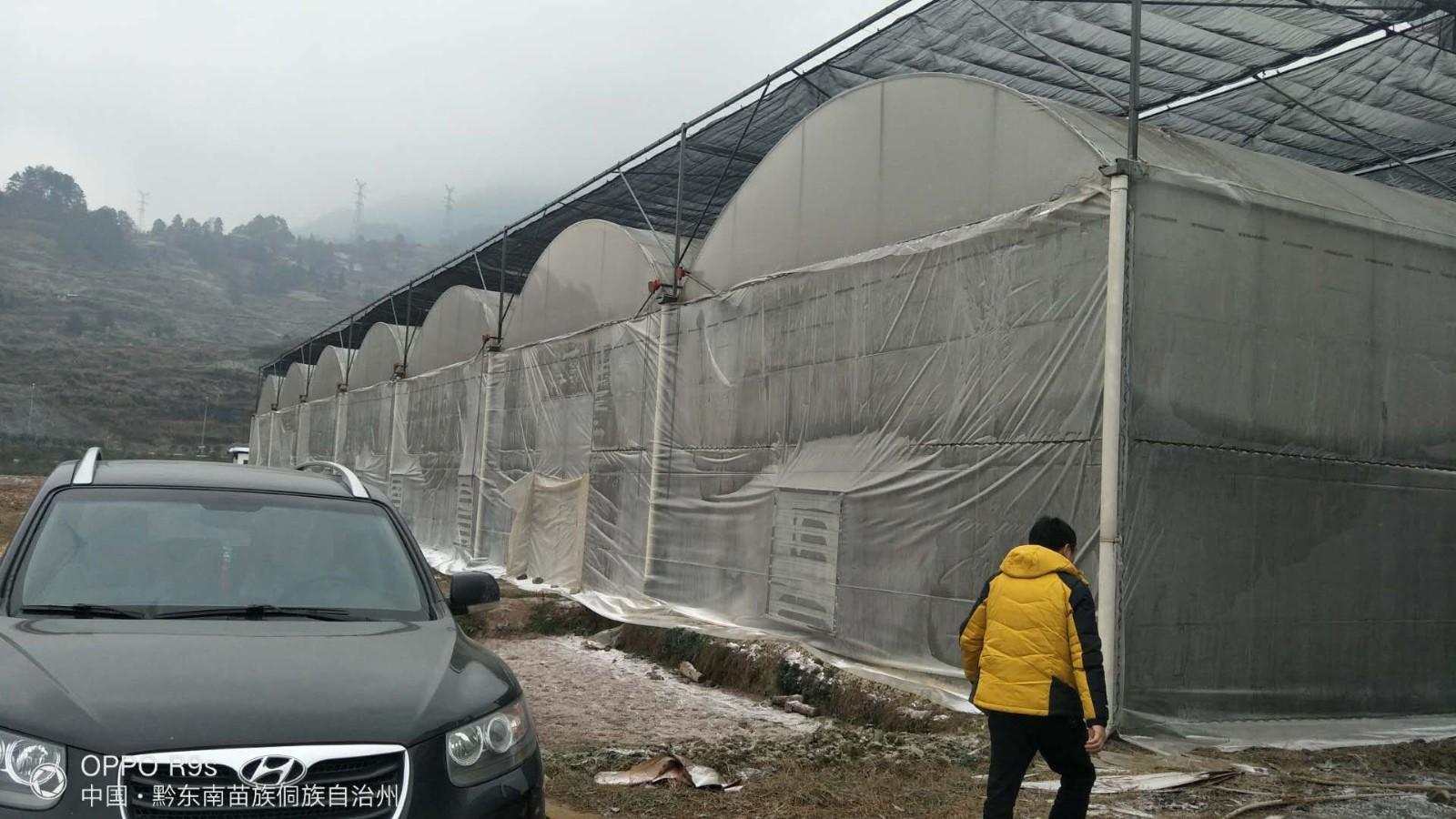县农业大棚--江苏御地温室