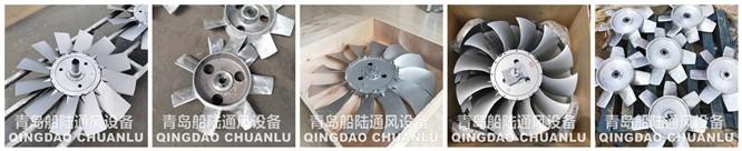 轴流通风机铝叶轮生产厂家丨广东省韶关乳源瑶族自治丨青岛船陆风
