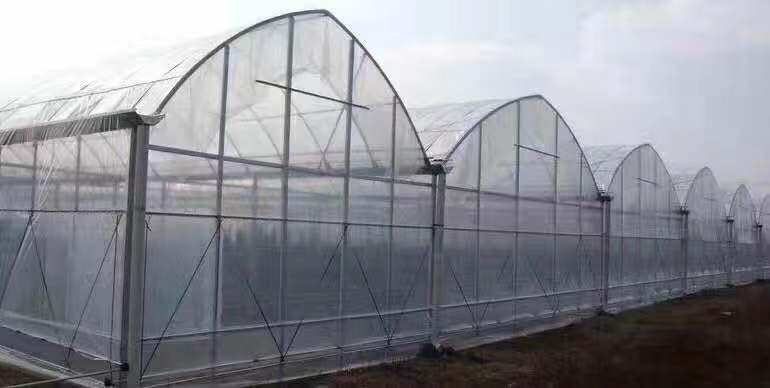 福建单栋温室大棚安装建造为一体