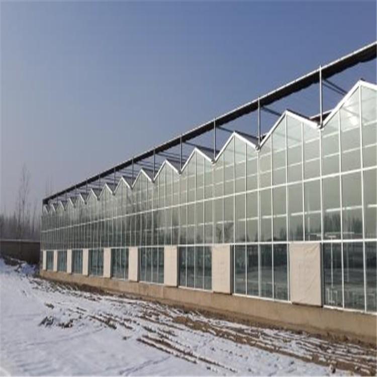 重庆养殖温室大棚厂家用心服务