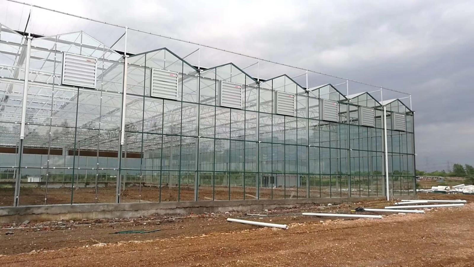 湖北水产养殖大棚厂家品质保证