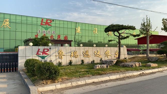 资阳市一体化污水处理设备厂家基地