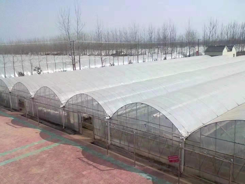 甘孜州温室大棚安装视频