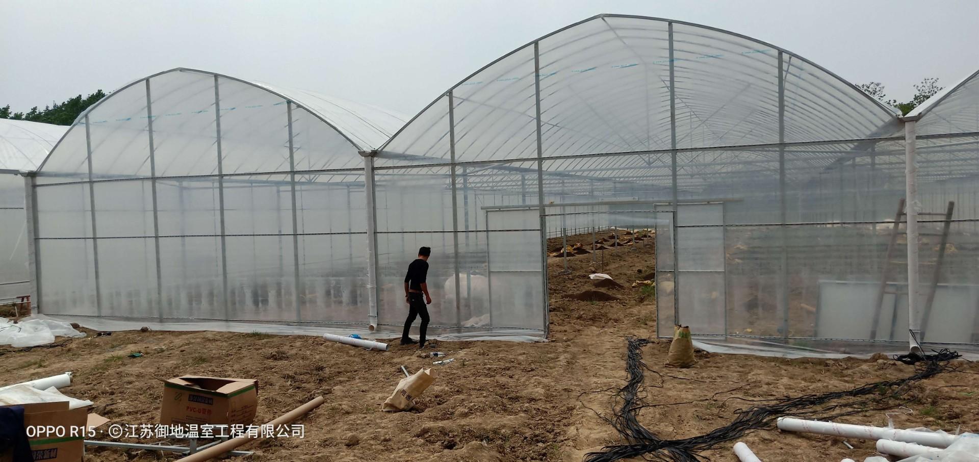 南京市连栋温室大棚-造价较低