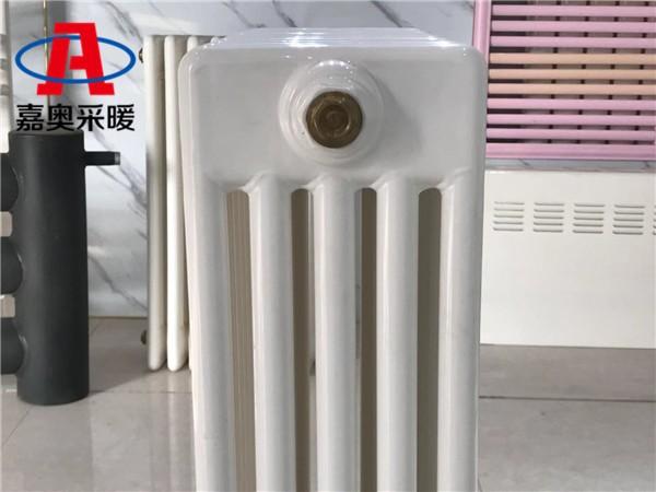 gz5-900钢五柱散热器宜都市