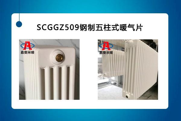 舞阳钢制柱型散热器qfgz506钢五柱暖气片厂