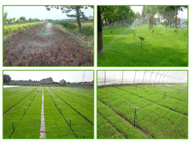 云南省大理州黄瓜水肥一体化滴灌生产定制