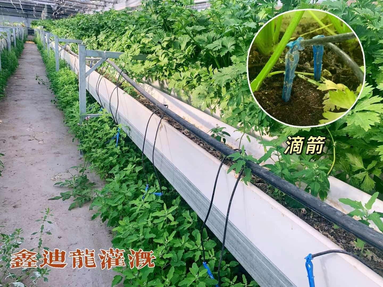 河南省平顶山市郏县果园小管出流它具有结构简单
