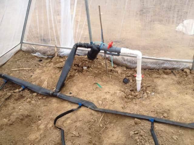 河南省焦作市山阳区农田滴灌管灌设备机安装好后