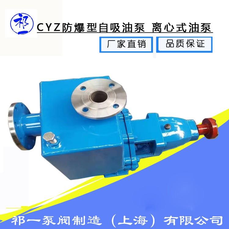 150CYZ-A-65工业用自吸油泵-自吸油泵使用说明