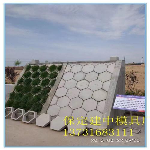 井研实心六角护坡 保定建中模具研究方向