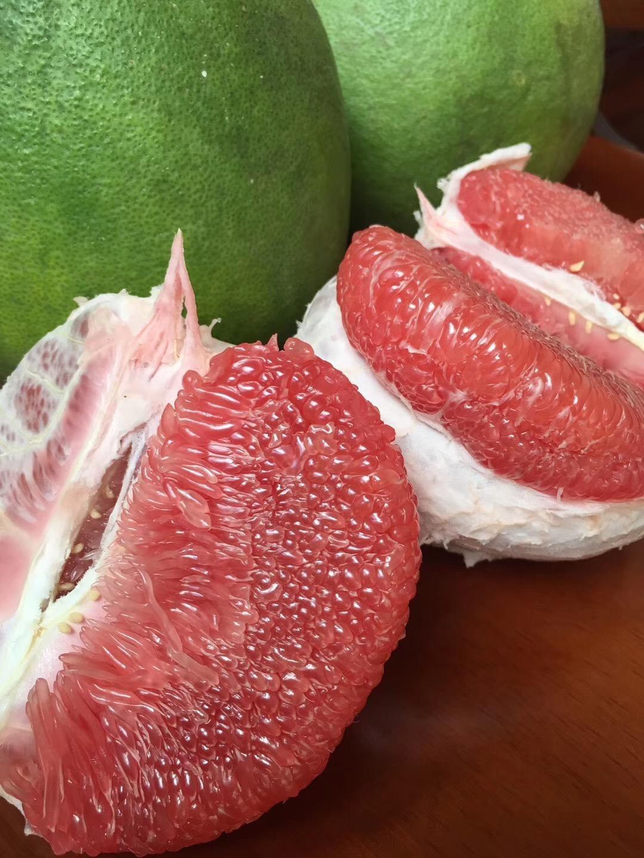 五莲哪里有泰国三红柚苗