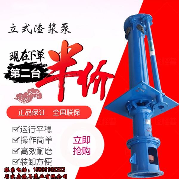 石家庄65QV-SP(R)高铬耐磨泵质保一年