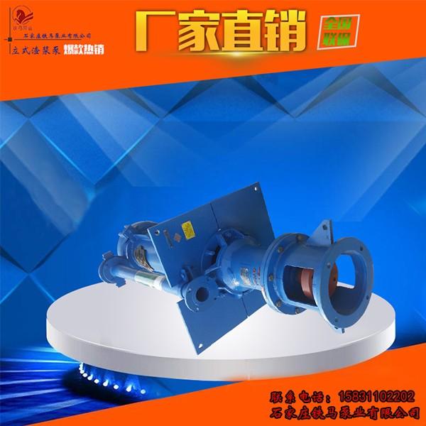 杨浦区100RV-SP(R)衬胶渣浆泵 应用广泛