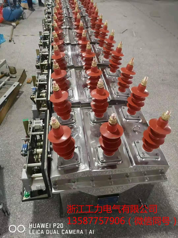荆州ZW8-12F户外高压真空断路器质量稳定
