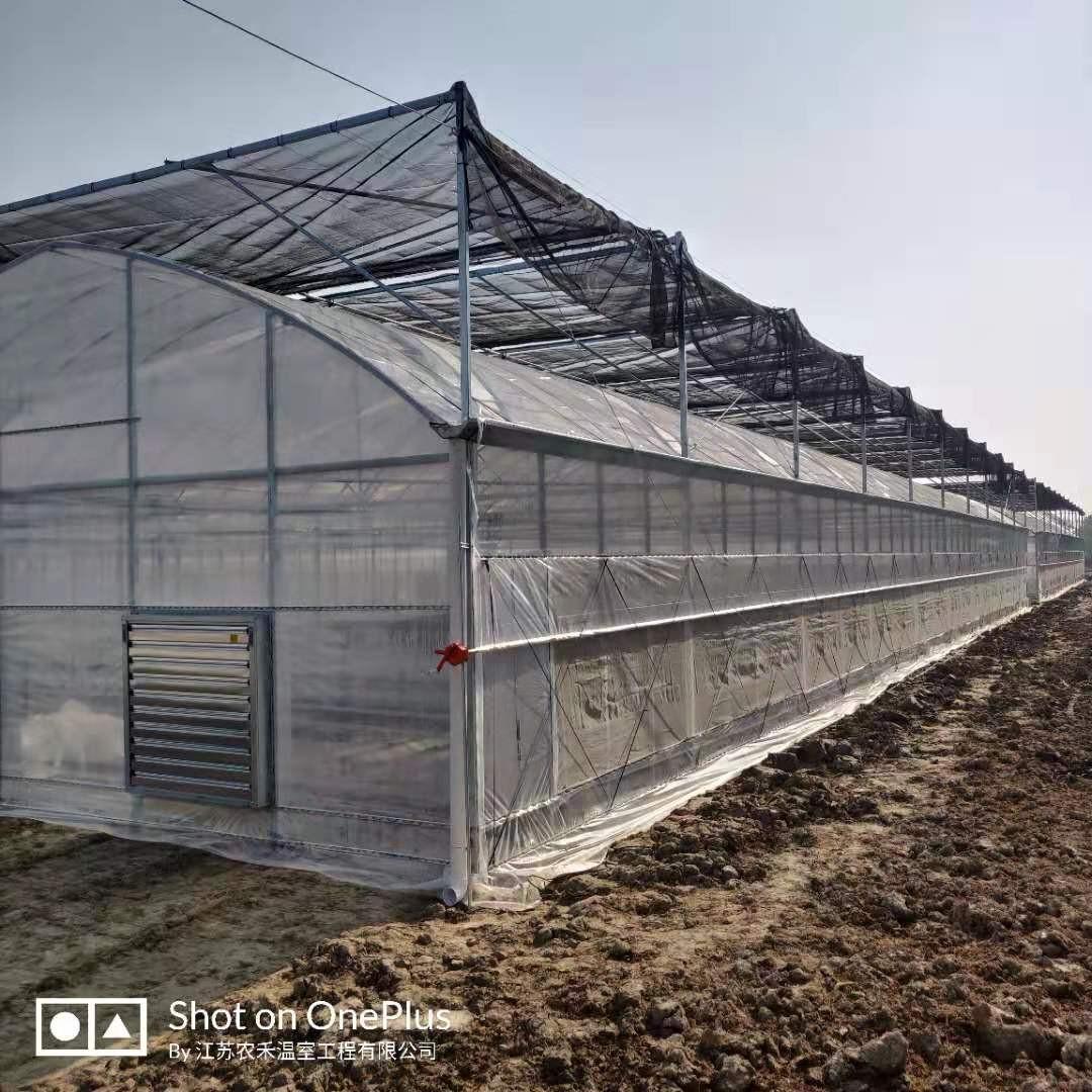鄂州內遮陽連棟大棚聯系方式