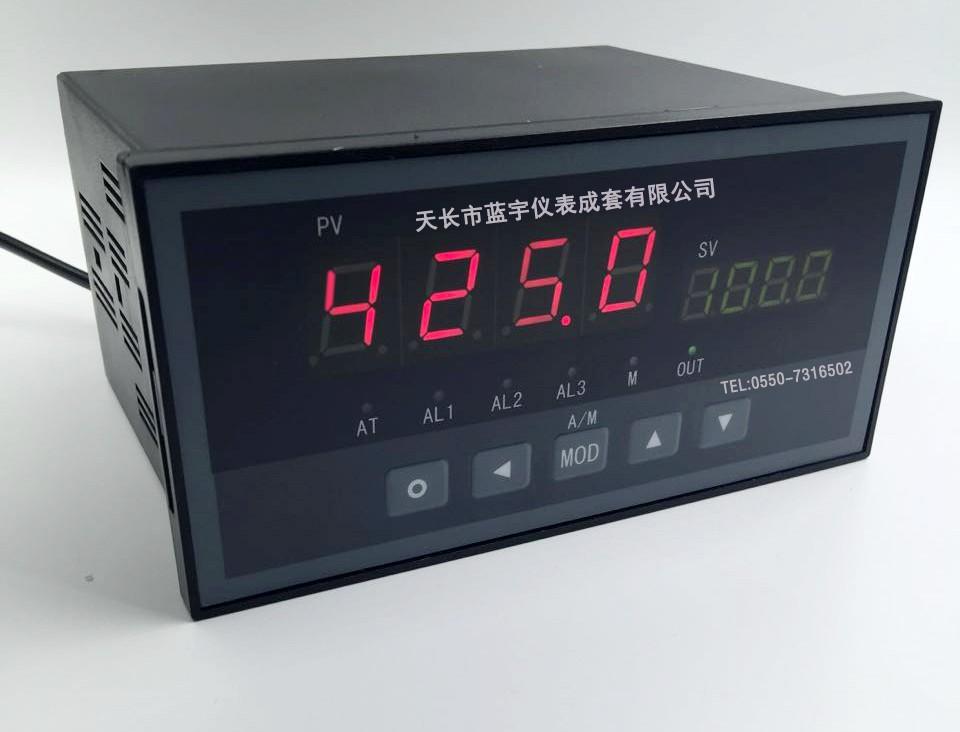 XSD2智能显示仪